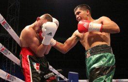 Как да залагаме на бокс: бърз наръчник